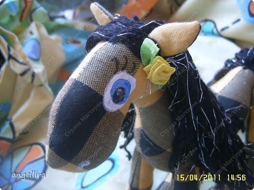 прискакала чёрно-жёлтая лошадка :) фото 2