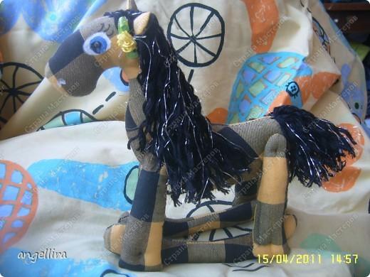 прискакала чёрно-жёлтая лошадка :) фото 4