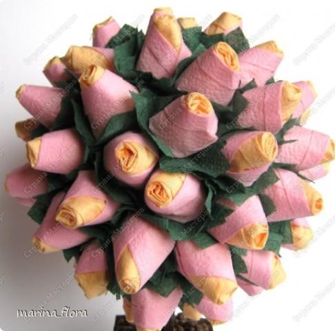 Роза — замечательное украшение любого ландшафта. Её сказочная красота придает местности неповторимое очарование. Особое место в этом многоликом великолепии занимают двухцветные сорта роз с эффектной раскраской лепестков. Многие из них существовали уже не одно столетие, и появлялись на свет в результате естественной мутации, без вмешательства селекционеров. Так что творцом этого шедевра становилась сама природа. Сейчас, благодаря селекционерам, появляются розы и в более дерзких нарядах.  Пополняю свою серию «Розовый куст» еще одной работой. Розовый куст «Настроение» (двухцветный).  фото 2