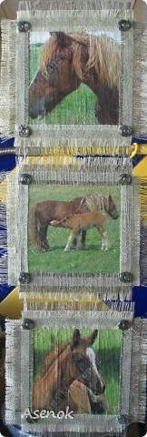 Мой папа любит лошадей и скоро у него день рождения... ну и в подарок ему родились вот такие лошадки.  Фото без вспышки. фото 1