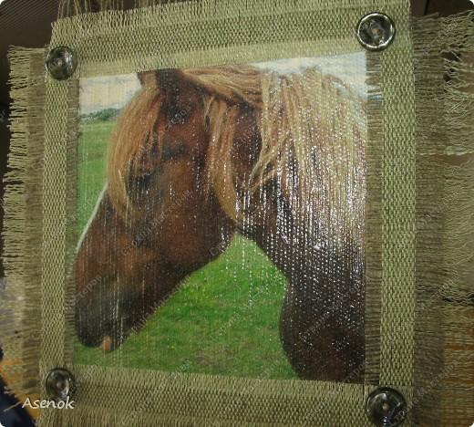 Мой папа любит лошадей и скоро у него день рождения... ну и в подарок ему родились вот такие лошадки.  Фото без вспышки. фото 2