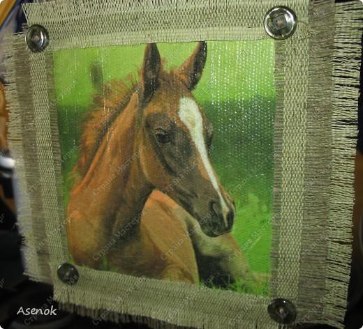 Мой папа любит лошадей и скоро у него день рождения... ну и в подарок ему родились вот такие лошадки.  Фото без вспышки. фото 4