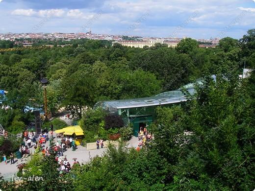 Воодушевившись фотопутешествиями Олесандры и фоторепортажем из московского зоопарка Hani , решила пригласить вас в виртуальное путешествие по парку Дворца Шёнбрунн  ( венской резиденции австрийских императоров ) и расположенному там зоопарку. Построенный в 1752 году в качестве императорского зверинца, он является старейшим зоопарком в мире. В то время зоопарк был доступен только членам императорской семьи. Император Иосиф II особенно любил это место, и сделал немало для развития парка. Он много путешествовал по Африке и Америке, привозя из каждой поездки животных для пополнения коллекции. При нем же, в 1779г., зоопарк открыли для публики, причем бесплатно.  фото 47