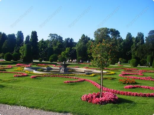 Воодушевившись фотопутешествиями Олесандры и фоторепортажем из московского зоопарка Hani , решила пригласить вас в виртуальное путешествие по парку Дворца Шёнбрунн  ( венской резиденции австрийских императоров ) и расположенному там зоопарку. Построенный в 1752 году в качестве императорского зверинца, он является старейшим зоопарком в мире. В то время зоопарк был доступен только членам императорской семьи. Император Иосиф II особенно любил это место, и сделал немало для развития парка. Он много путешествовал по Африке и Америке, привозя из каждой поездки животных для пополнения коллекции. При нем же, в 1779г., зоопарк открыли для публики, причем бесплатно.  фото 106