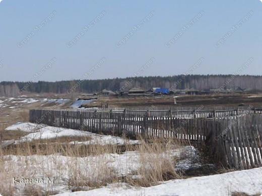 Эти снимки были сделаны неделю назад, 9 апреля 2011 г.  фото 4