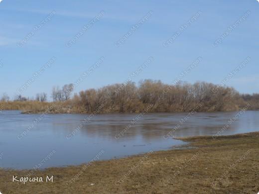 Эти снимки были сделаны неделю назад, 9 апреля 2011 г.  фото 7