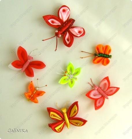 Всем! Доброго здравия!    Сегодня  расскажу о том, как я делаю бабочек, используя ленточки.    Для начала о бабочках из капроновых лент (давно обещанный мастер-класс тем, кому понравилась моя первая бабочка).   фото 18