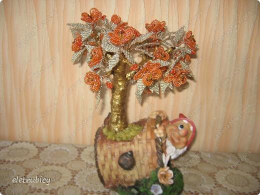 Персиковое дерево фото 3