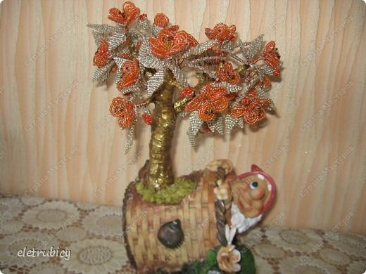 Персиковое дерево фото 5
