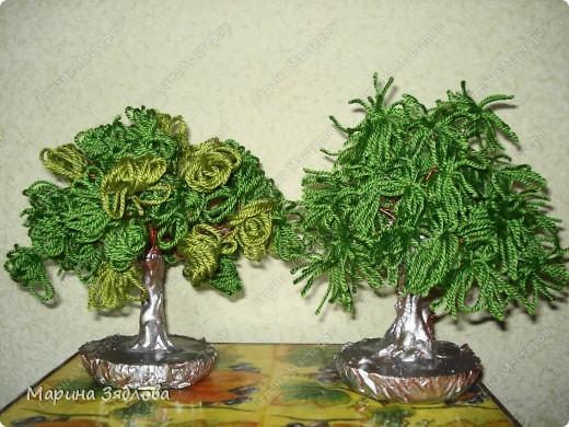Два моих первых деревца из ниток.Очень понравилась идея , делаются легко и быстро , главное желание . фото 1