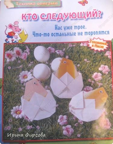 И вылупились три цыплёнка... фото 6