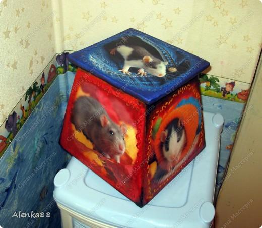 А так в старом ящике для цветка поселились мыши ... =) фото 2