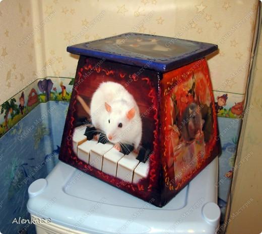 А так в старом ящике для цветка поселились мыши ... =) фото 3