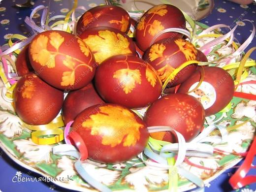 Обычно мы всей семьёй красим яйца вот таким способом.Берётся листик от петрушки или помидорной рассады,накладывается на яичко, капроновый кусочек сверху и завязывается сзади узелок Варятся в луковой шелухе..Ну вы наверняка знаете этот способ) фото 1