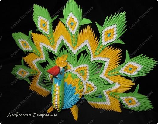 Теперь и у меня есть такой павлин благодаря Галины Тиховой http://stranamasterov.ru/node/168564?c. Огромное ей спасибо за мастер-класс. фото 1