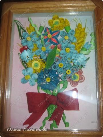 полевые цветочки фото 3