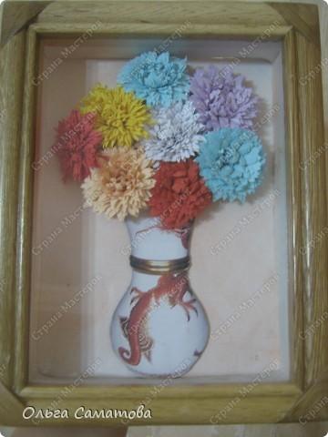 полевые цветочки фото 4