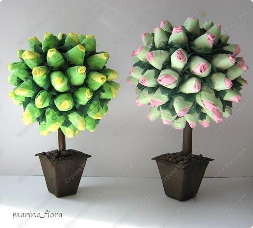 Сегодня в распоряжении флористов довольно большая коллекция роз зеленых сортов.  фото 1