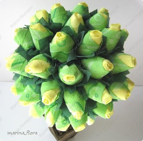 Сегодня в распоряжении флористов довольно большая коллекция роз зеленых сортов.  фото 3