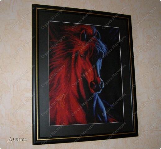 """Лошадь """" Огонь и лёд"""" или """" Лёд и пламя"""""""