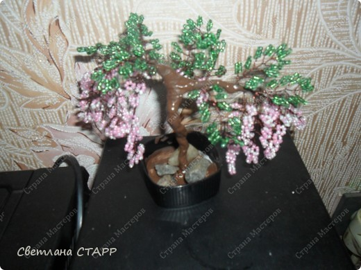 дерево еще одно фото 1