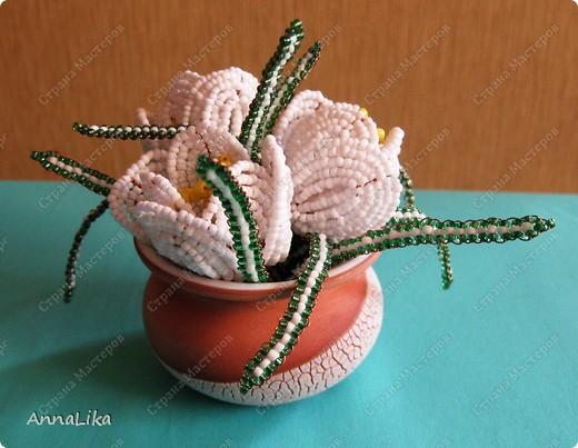 Добрый вечер, Страна!!! Всем доброго здоровья и творческих успехов! Крокусы - весенние цветы! Очень хочется, чтобы эти цветочки принесли тепло и радость в каждый дом! Приятного всем просмотра! фото 2