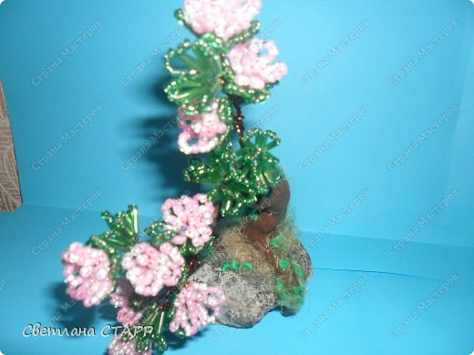 Щит и роза фото 5