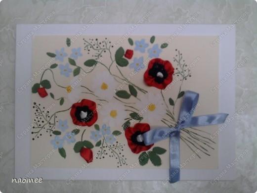 Полевые цветы фото 1