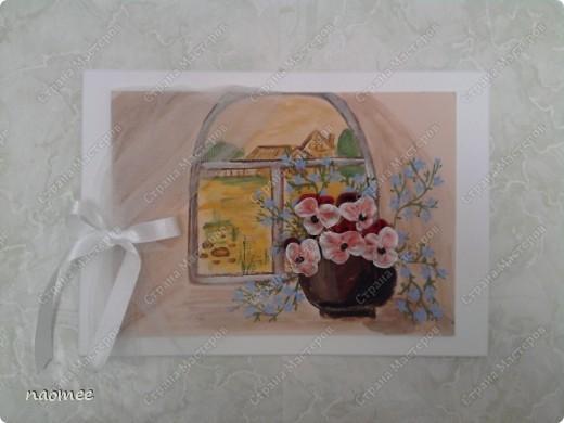 Полевые цветы фото 3