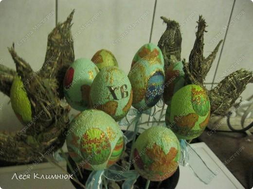 Пальмы,которые святятца вместе с вербой, на Вербное воскресенье. фото 12