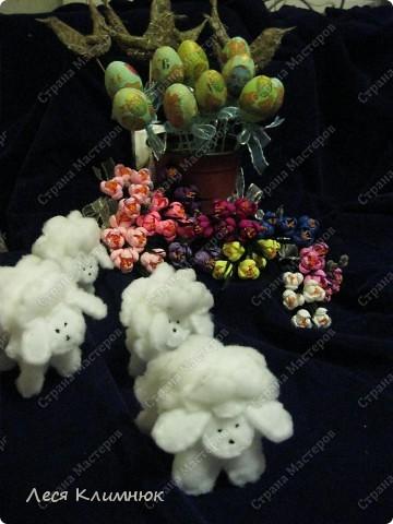 Пальмы,которые святятца вместе с вербой, на Вербное воскресенье. фото 10