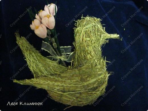 Пальмы,которые святятца вместе с вербой, на Вербное воскресенье. фото 4