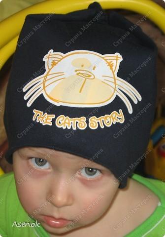 Желтая с котами. фото 6