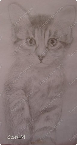 Котенок - Матрын фото 1