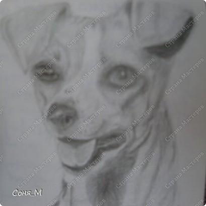 Котенок - Матрын фото 2