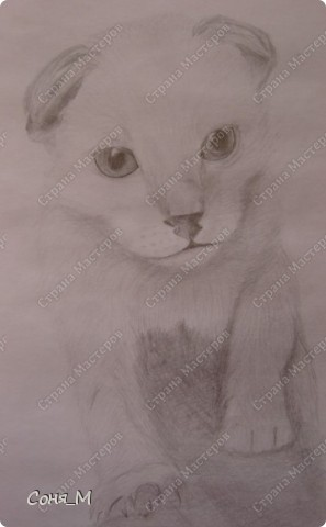 Котенок - Матрын фото 5