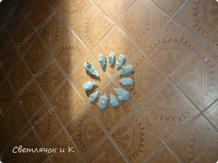 Ежей много не бывает))) фото 2