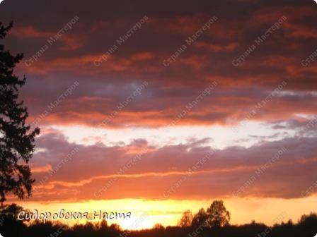 19 мая весь день шел дождь, и только вечером небо стало проясняться... фото 6
