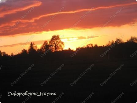 19 мая весь день шел дождь, и только вечером небо стало проясняться... фото 8