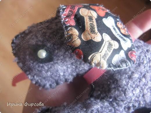 Многофункциональный щенок. фото 2