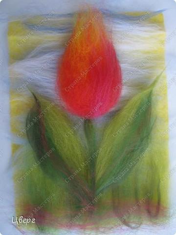 Тюльпан. фото 19