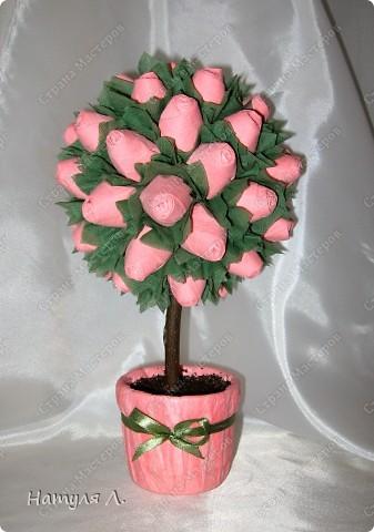 И снова розовые деревья фото 1