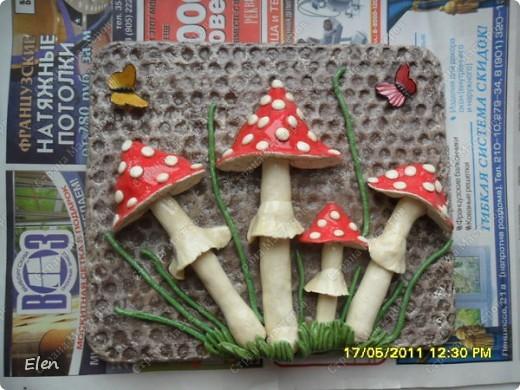 маки и ромашки соленое тесто,панно из гипса фото 9
