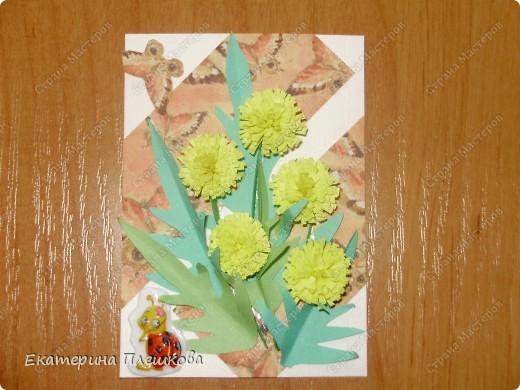 Доброе время суток!!! Девочки, вот еще серия с цветами. Первыми выбирают Гайдаенко Елена, Таня и Лена, Ефимова Оксана. фото 5