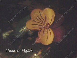 """Открытка """"Анютины глазки"""" фото 13"""