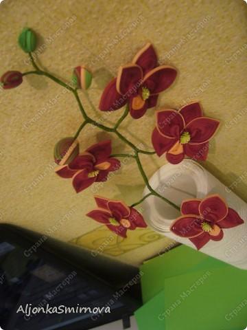 Вот такую орхидею я сделала на одном дыхании! фото 4
