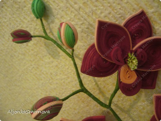 Вот такую орхидею я сделала на одном дыхании! фото 3
