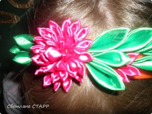 Вот какую хризантему я вырастила! фото 1
