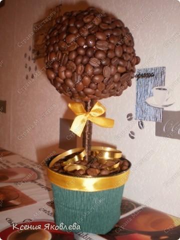 Долго смотрела на мастериц кофейных деревьев и вот решила тоже сделать, но долго не решалась зарегистрироваться на сайте, а теперь потихоньку представляю свои поделки.  Вот это дерево самое первое и оно осталось дома. фото 1