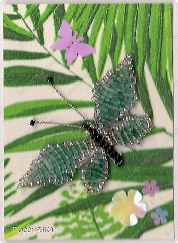 Началась пора бабочек - много их уже вылетело благодаря замечательным мастерицам, все разные и каждая по-своему уникальна. Рискну и я предложить своих вашему вниманию. В должниках у Екатерина Плешкова, bibka и видимо Лена-Лена. У них право первого голоса. фото 4